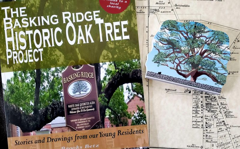 Basking Ridge Oak Tree and Keepsake Book