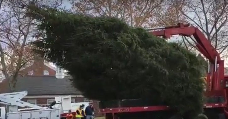 2016 - The Basking Ridge Fire Department raises the annual town Christmas tree on the green. Source: Basking Ridge Patch.