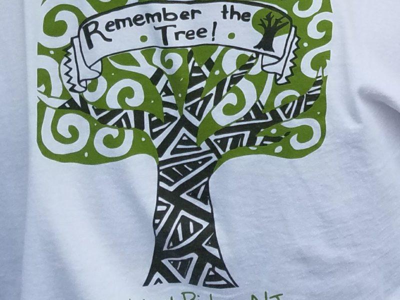 Remember the Oak Tree - Hannah Shen