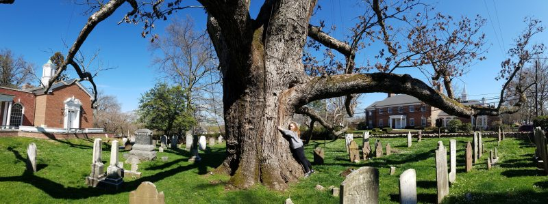 Local resident Rachel Betz gives the tree a big hug.