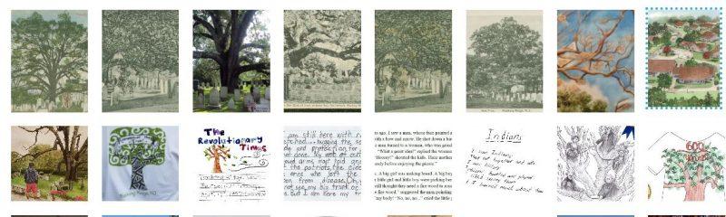 The Basking Ridge Oak Tree Photo Album - Mr Local History Project